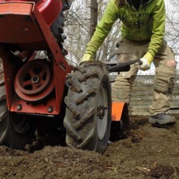 Urban Farming in the News