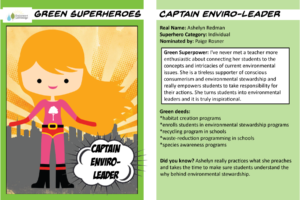 Superhero trading cards Captain Enviro Leader