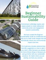 beginner-guide-cover