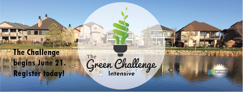 fda9b481b315a New and Noteworthy – Summer 2019. NEW: Register now for the Intensive Green  Challenge!